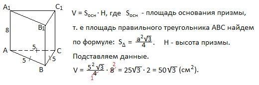 ent7-19