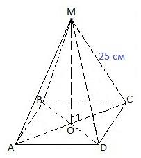 ent19-19